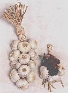 plant pic garlic braid
