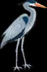 motif bird heron lg
