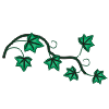 motif plant herb Ivy sprig
