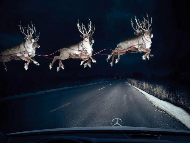Dashcam Reindeer 122512