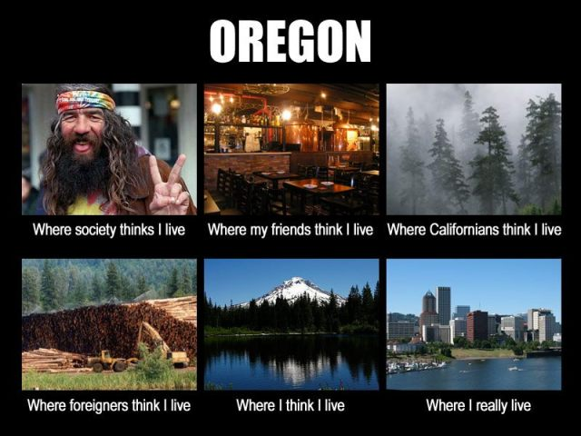 newsletter funny oregon what I really do
