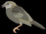 motif bird grass sparrow