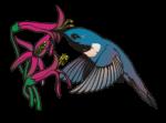 motif bird hummingbird2