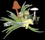 motif herb mushroom cluster