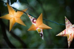 newsletter magick star lanterns