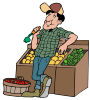 farmers market motif food