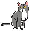 motif animal cat grey white