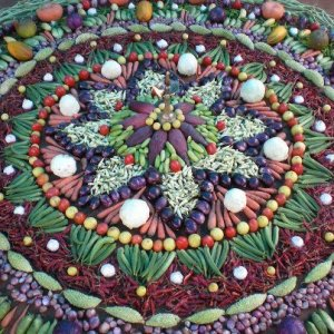 newsletter food mandala