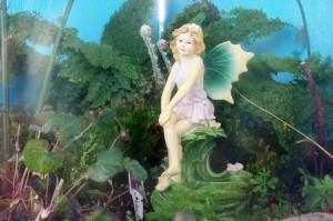 fairy garden 040713