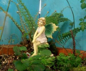 fairy garden 042213