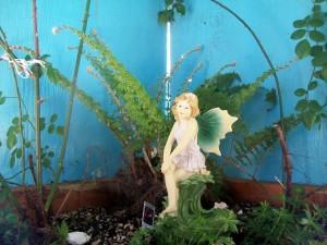 fairy garden 042913