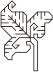 motif blackwork leaf