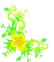 motif plant buttercup3color