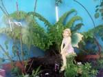 fairy garden 051913 A