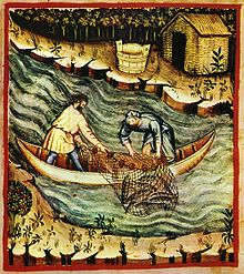 220px-36-pesca,Taccuino_Sanitatis,_Casanatense_4182.