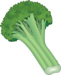 food motif veg broccoli
