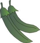 food motif veg green bean