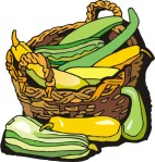 food motif veg squash basket