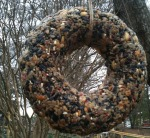 seed wreath 01