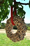 seed wreath 04