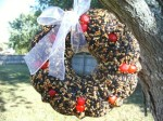 seed wreath 05