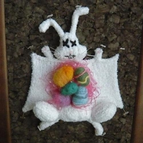 dissected-easter-bunny-18342-1239193297-4