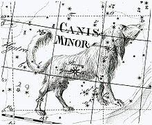 astro Procyon Canis Minor
