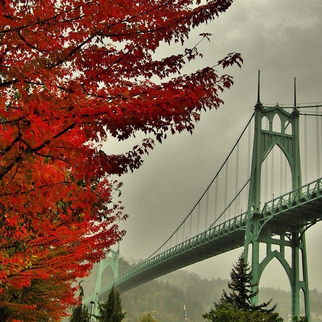 StJohns Bridge photos by mikeinstagramdotcomslashmikephotog7