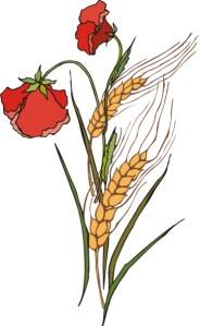poppy wheat flower motif plant