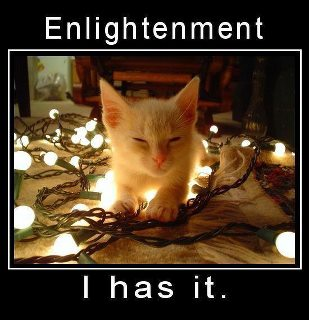 Enlightenment cat funny lights Yule