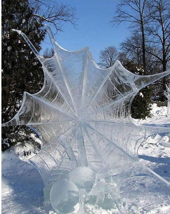 winter web beautiful