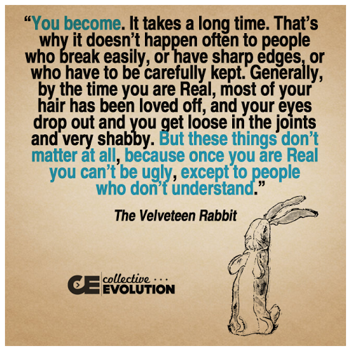 Velveteen rabbit wise