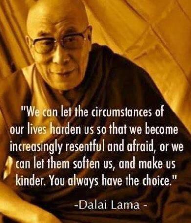 Dalai Lama wise