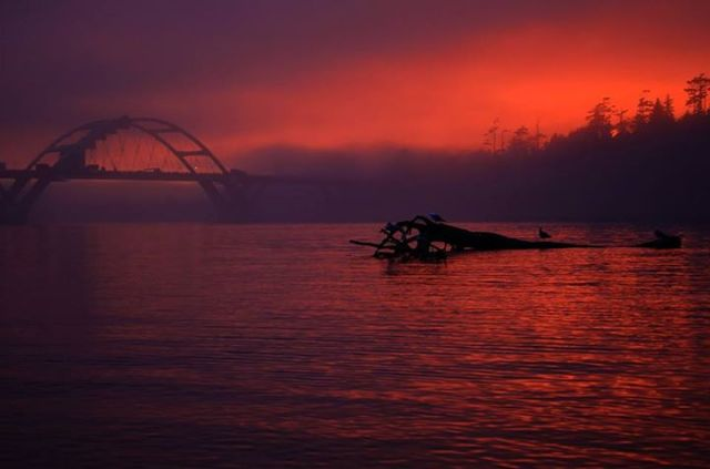 Daniel Schoon - A bridge a bay some fog throw in a sunset and you get a great picture