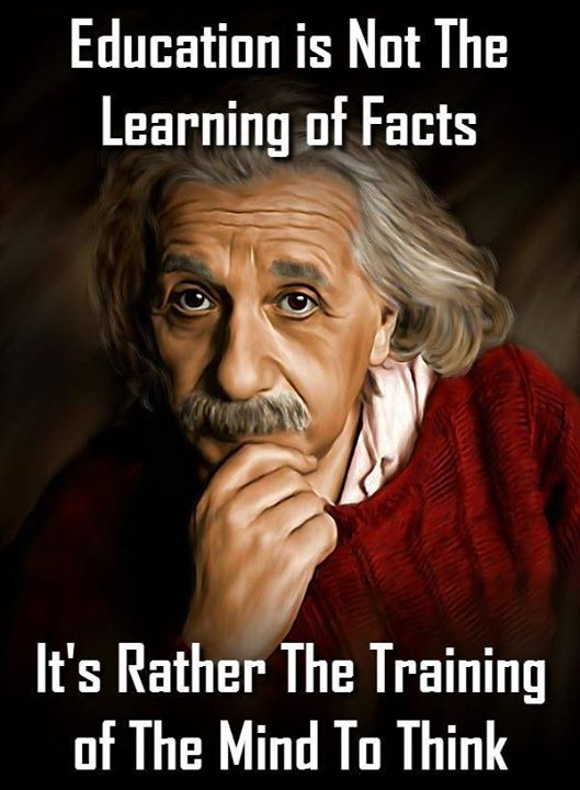 Einstein education wise