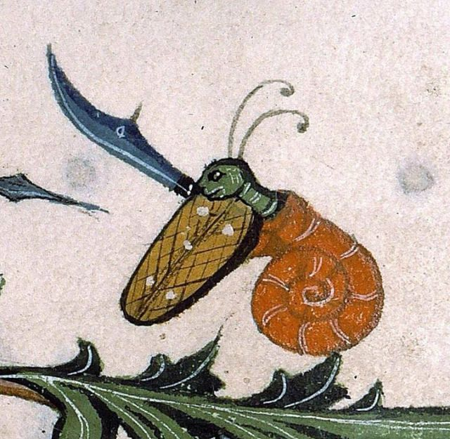 medieval battle snail