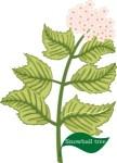 Plant motif snowball tree