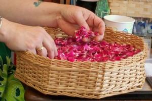 070515 Roses
