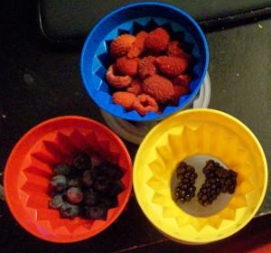 071615 Berries