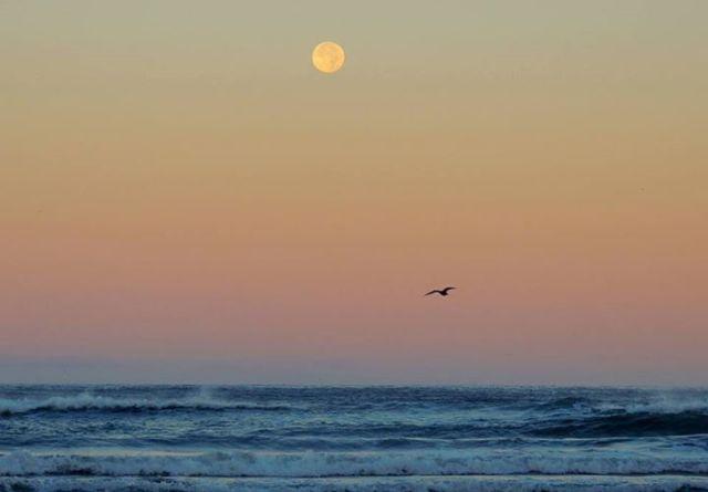 073115 Ken Gagne Yachats Blue Moon