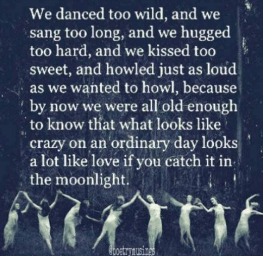 Dance too wild Fairies Wise