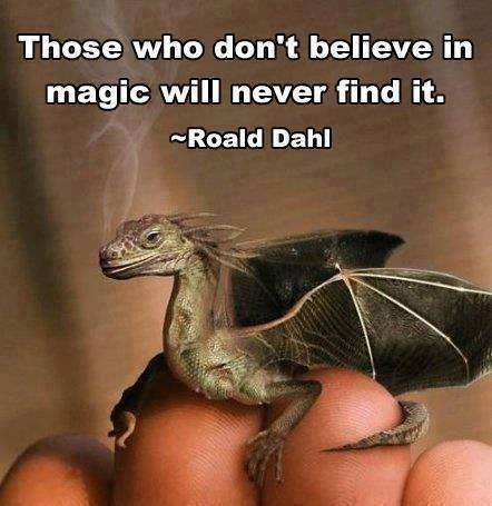 Dahl Believe in Magic Wise