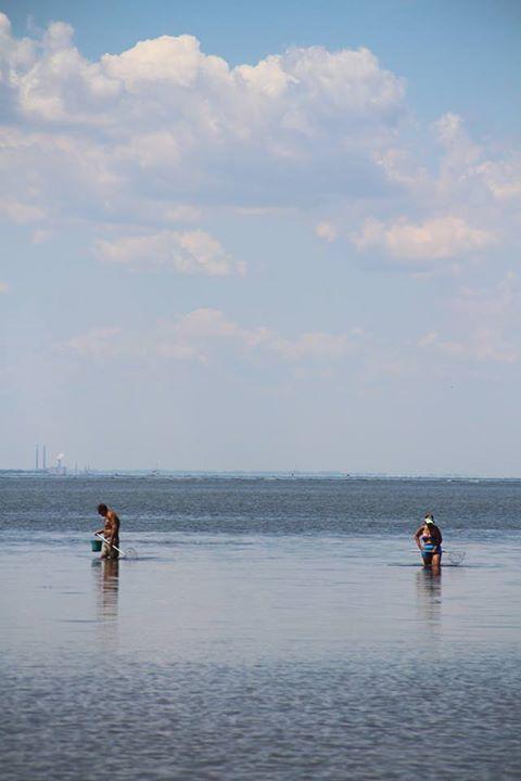 081015 Chesapeake Bay Maritime Museum