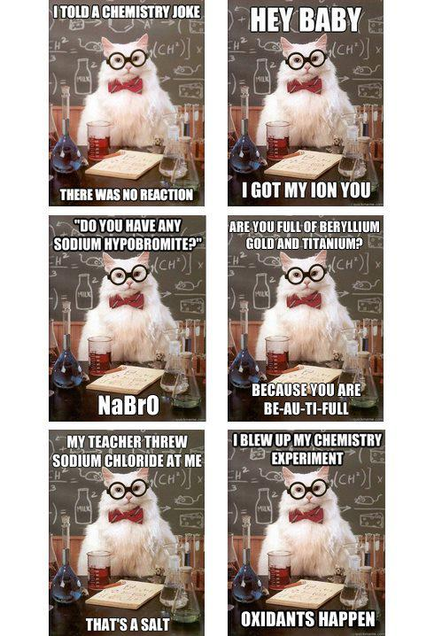 Science Cat funny