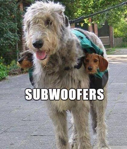 subwoofers funny