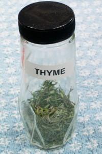 101715 Thyme
