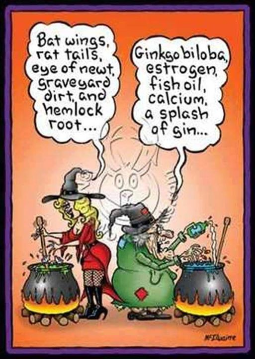 NewOldWitch funny