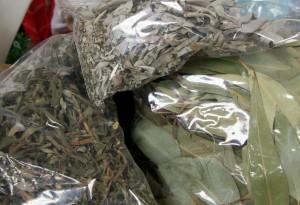 120615 Sage Herb
