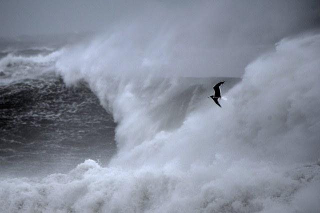 120815 Ken Gagne ocean