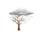 fog weather motif